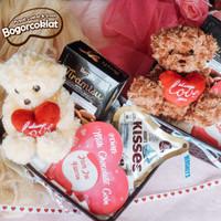 Parsel Valentine Teddy Love