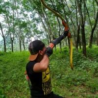 Busur Panah Gold Meanders Bow
