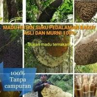 Harga promo madu hutan baduy asli dan murni   Pembandingharga.com