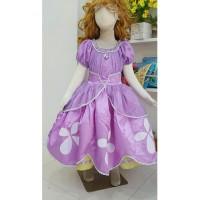Baju Anak Gaun Dress Kostum Princess Putri Puteri Sofia - 01
