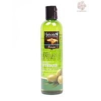 OriginalPromo Herborist Shampo Zaitun Olive Anti Oxidan 250ml Murah