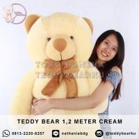 Jual Boneka Teddy Bear (Beruang) Jumbo 1,2 Meter