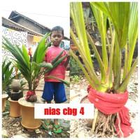 Jual Durian Musangking Kaki 10 Kota Metro Adi Baswara Tokopedia
