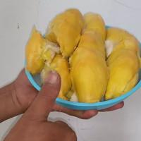 4 Bibit Durian Bawor Dan Montong Oren