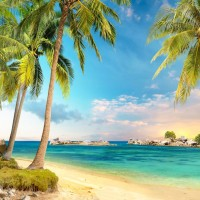 G-504 Vinyl Summer Island Holiday Photography Backdrops Blue Sky and