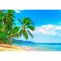 G-503 Vinyl Beach Palm Tree Backdrops Blue Sky and Sea Photo Booth