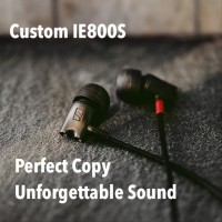 Custom Sennheiser IE800S High End DIY Earphone