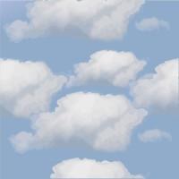 HUAYI blue sky photography backdrop Art fabric newborn&pet