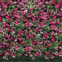 Vinyl Photography Backdrop Flower Wall Children Birthday Background