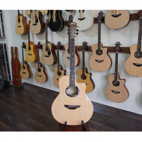 Gitar Akustik Electrik Ibanez Apx 600 String
