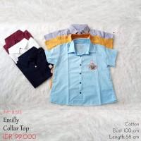 Atasan Kemeja Wanita - Emilly Collar Top