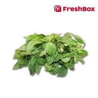 Freshbox Basil 100gr