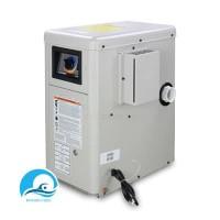 H-100 BTU ELECTRIC IGNITION HAYWARD PEI 100.000