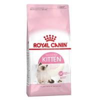 royal canin fhn kitten 36 4 kg