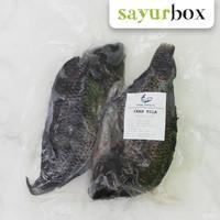 Anak Empang Ikan Nila - 1 Pack (Sayurbox)