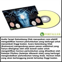 CD AUDIO TERAPI GELOMBANG OTAK PENINGGI BADAN