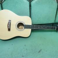 gitar akustik merk lakewood model bulat sunkay trusrod murah jakarta