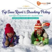 Tur Jepang 1 Hari Fuji Snow Resort & Strawberry Picking - Infant