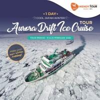 Tur Jepang 1 Hari Abashiri Aurora Drift Ice Cruise Tour - Anak