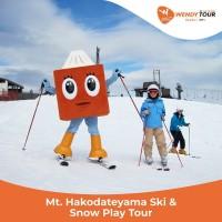Tur Jepang 1 Hari Mt. Hakodateyama Ski & Snow Play Tour - Anak
