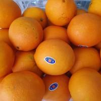 Buah Jeruk Potong Sunkist Navel Oranges Fresh Per Dus