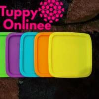   Seal Tutup Toples Summer Fun Tupperware