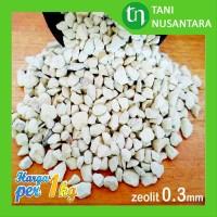 Media Tanam Pasir Batu Ziolit Zeolit Zeolite Putih 0.3mm collection