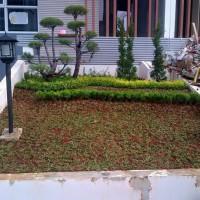 Jual Contoh Taman Outdoor Jakarta Utara Kios Bunga Aulia Tokopedia