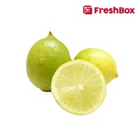 Freshbox Lemon Lokal 500gr