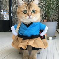Cat Lady Uniform / Baju Kucing