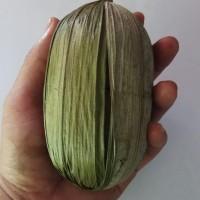 Gula Merah Pohon Aren/Kawung Asli Banten