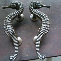 Handle Pintu Kuningan / Brass Door Pull - Kuda Laut 04