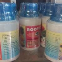 Root-Up Hormon Pertumbuhan Akar - ZPT