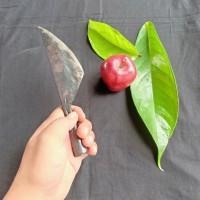 pisau raut kayu/belah bambu dari baja per