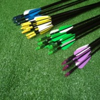 Arrow / Anak Panah Fiber 6mm Impor