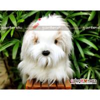 Boneka Anjing Putih Ukuran Jumbo ( HK - 6292100 )
