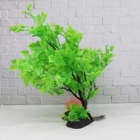 Tanaman Aquarium bonsai plant T1102