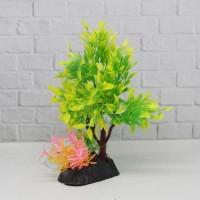 Tanaman Aquarium bonsai plant T605
