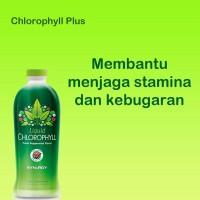 Harga suplemen herbal jamu tradisional asam urat terbaik 100 ampuh dan | Pembandingharga.com