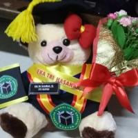 Boneka wisuda teddy bear cream lengkap 25cm