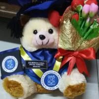 Boneka wisuda teddy bear cream + buket bunga 25cm