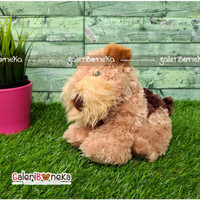 Boneka Anak Anjing Welsh Terrier Puppy Ukuran Kecil ( HK - 638520 )