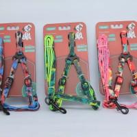 Aksesoris Hewan Colorful Leash + harness