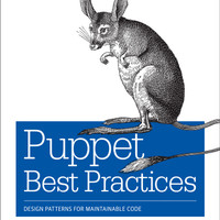 Puppet Best Practices: Design Patterns for Maintainable Code [eBook]