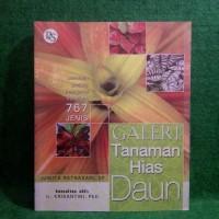 Galeri tanaman hias daun - Juwita ratnasari