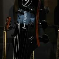 Gitar Akustik Custom Greg bennett exotic line Gloosy