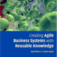 Creating Agile Business Systems