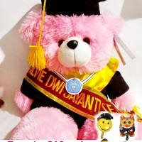 Boneka Wisuda Teddy Bear 50cm