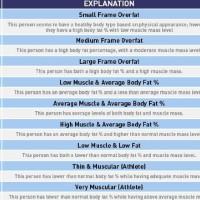 Harga tanita bc 541 timbangan lemak body fat | Pembandingharga.com
