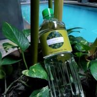 Virgin Coconut Oil (VCO) untuk hewan peliharaan kesayangan anda